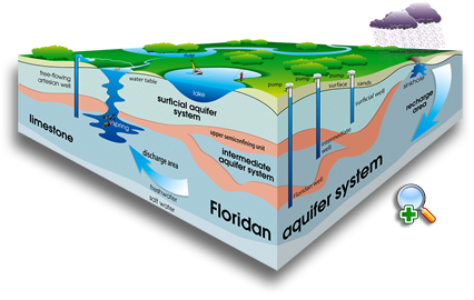 Cutaway illustration of the Floridan aquifer