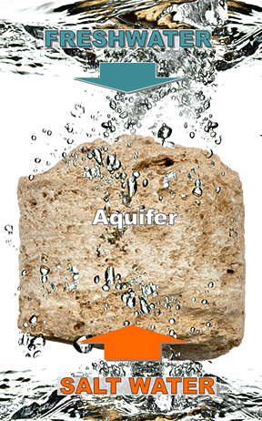 Graphic showing fresh water and salt water mixing in the aquifer